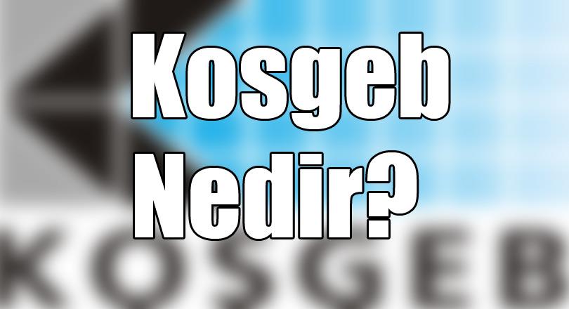kosgeb-hibe